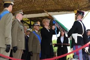 ESERCITO_Ministro Pinotti insignisce bandiere Esercito con MOVM 2