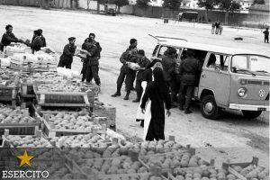20160506-19760506_terremoto in Friuli_intervento Esercito (8)