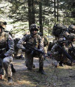 CESIVA: in corso la preparazione per Afghanistan e Iraq della Taurinense e del 66° Trieste e 6° Alpini