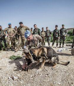 Sector West, UNIFIL: primo corso C-IED a favore delle LAF da parte degli istruttori italiani del Combat Support Battalion