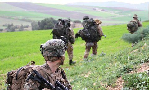 COMFOP SUD: i Bersaglieri della Aosta in addestramento con gli US Marines Corps per una sinergia di pianificazione e condotta